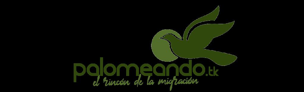 cabecera-inicio-logotipo