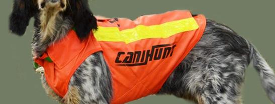 Accesorios para canes de caza