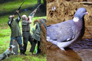 Estas son las medidas si compartes puestos de caza en tiempos de pandemia COVID19