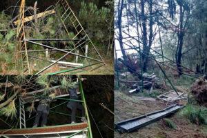 Animalistas vuelven a destrozar puestos de caza en líneas de pase de paloma de Navarra y País Vasco